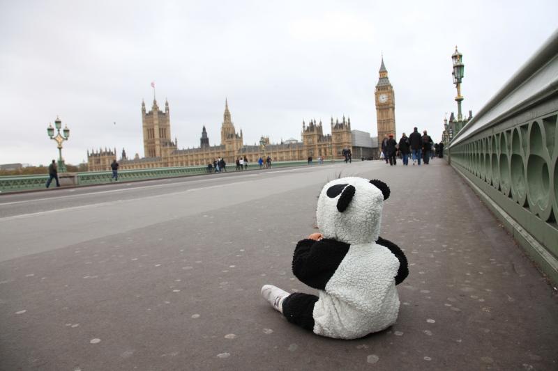 ロンドン旅行ビッグベン編_c0187779_5103016.jpg