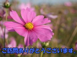 b0136683_17473180.jpg