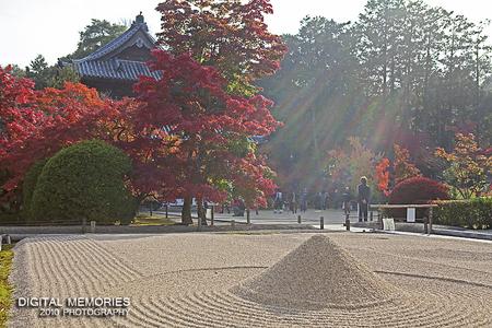 紅葉 『宝福寺 2010』_c0083985_22403656.jpg