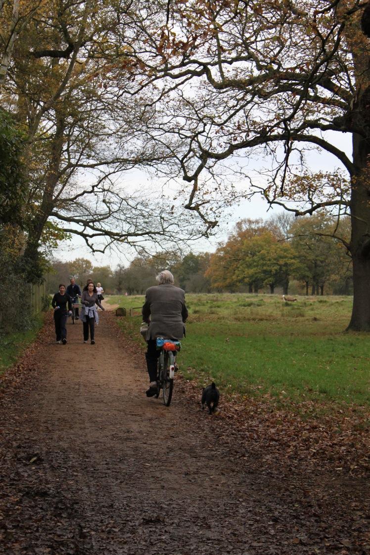 バースデー散歩 in Bushy Park_a0137487_1561884.jpg