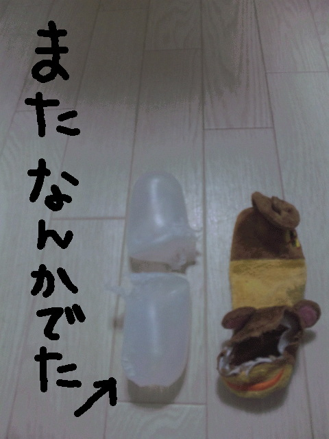 d0187891_25541.jpg