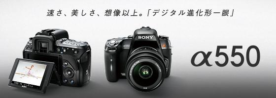 広島ドライブ_d0001300_22124510.jpg
