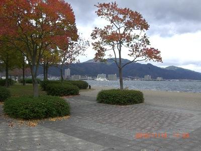 晩秋の琵琶湖岸_e0150006_15201856.jpg