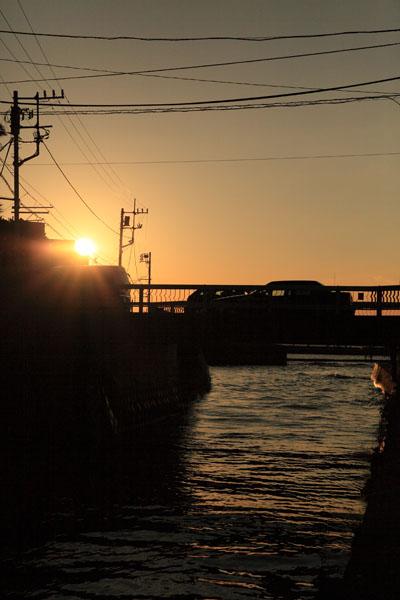 11月15日(月)  秋谷BBQ 2010年秋 (秋谷劇場編)_f0167208_0194863.jpg