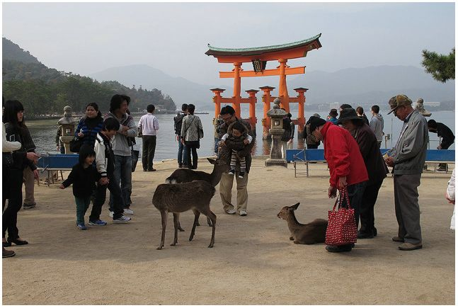 ヒロシマ行き_c0042324_1122574.jpg