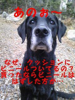 f0148927_16365566.jpg