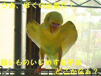 f0196665_062338.jpg