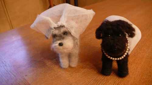 一人娘の結婚式。_b0182969_932350.jpg