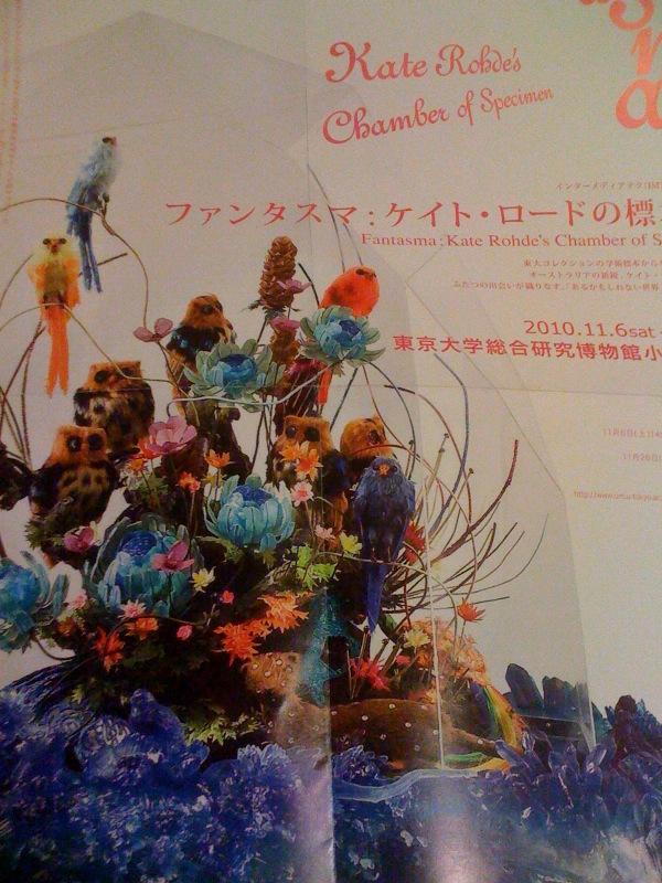 東京大学総合研究博物館小石川分館(長い)_a0157872_23595880.jpg