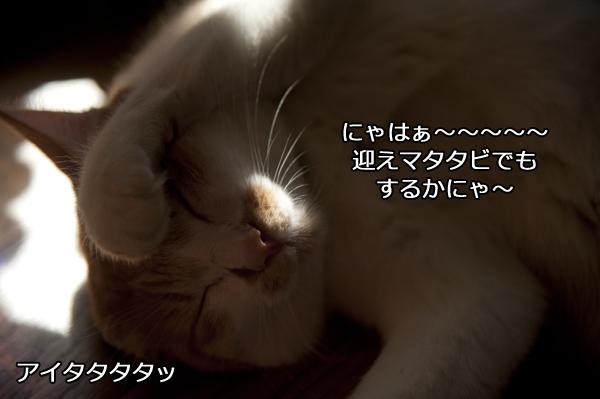 b0141397_22493872.jpg