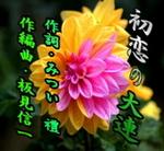 d0095910_6463438.jpg