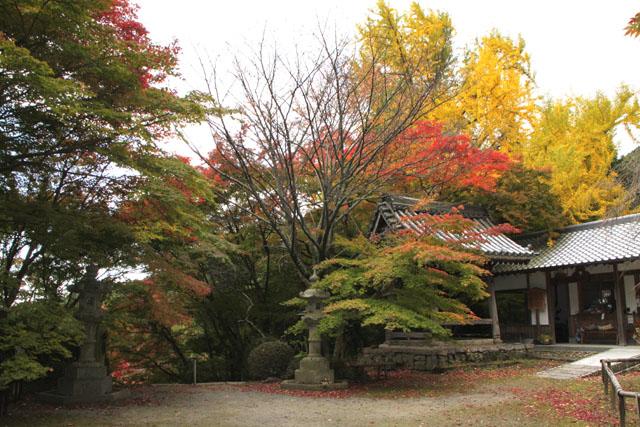 小塩山 金蔵寺_e0048413_20363566.jpg