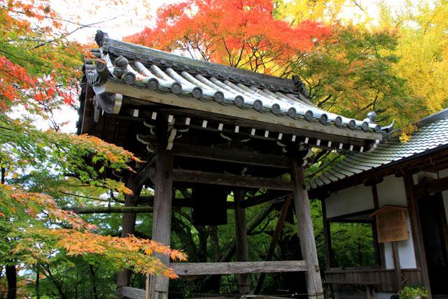 小塩山 金蔵寺_e0048413_20364997.jpg