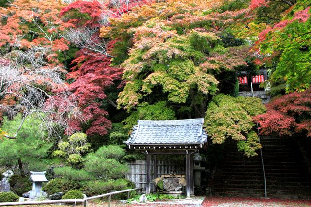 小塩山 金蔵寺_e0048413_2037374.jpg