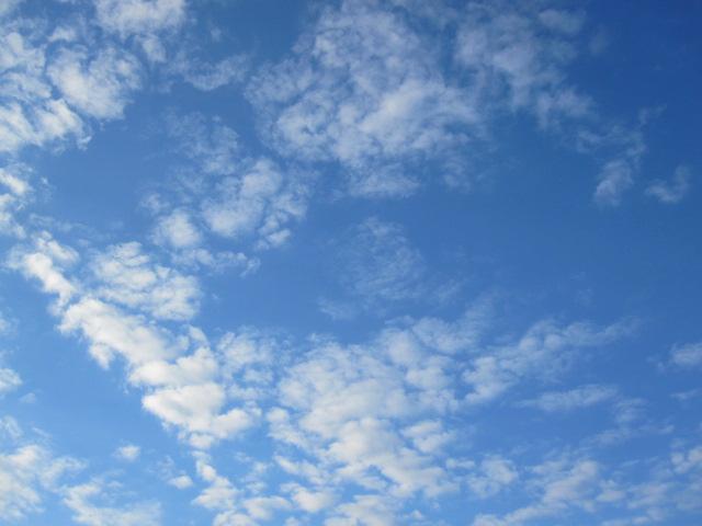 うろこ雲_c0200314_1453773.jpg