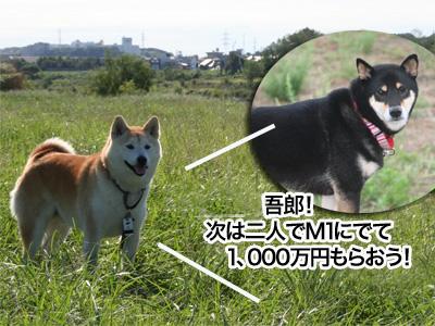 c0166018_18585958.jpg