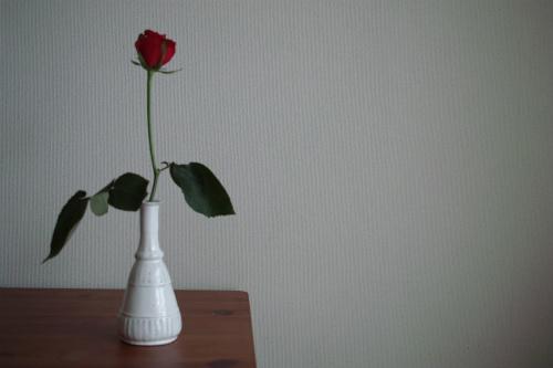 b0129548_1554165.jpg