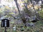 宮座山 (みやぐらやま)_b0156456_18461363.jpg