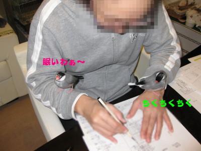 b0158061_22512761.jpg