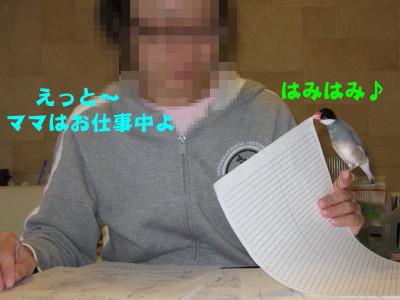 b0158061_22513377.jpg