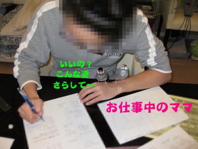 b0158061_22514691.jpg