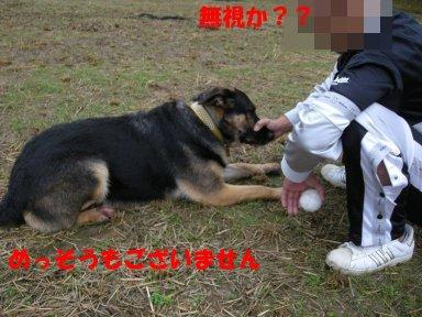 b0113663_849188.jpg