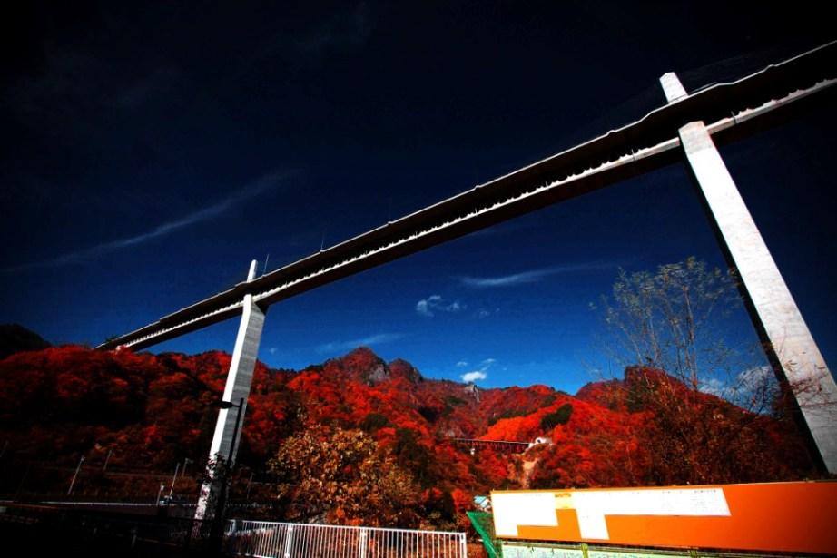 晩秋の吾妻渓谷と八ツ場ダム_f0180878_16505637.jpg