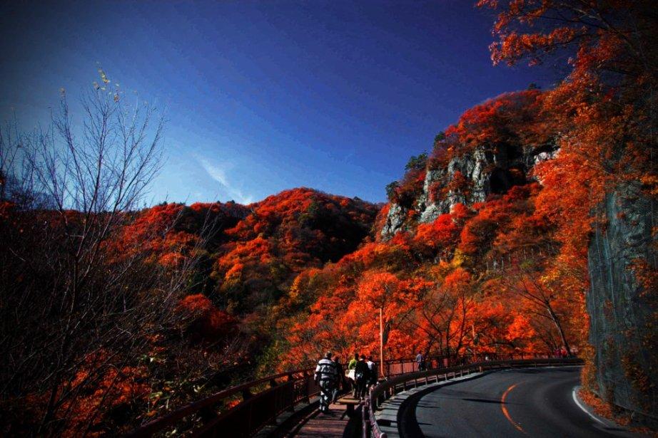晩秋の吾妻渓谷と八ツ場ダム_f0180878_16512864.jpg