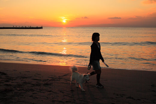 11月16日(火)  夕陽の想い出_f0167208_054946.jpg