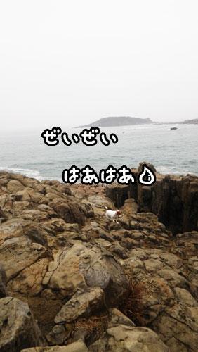 f0129214_12135868.jpg