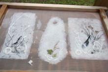 八ッ杉千年の森のイベント「和紙に炭を漉く」開催_e0061225_1411022.jpg