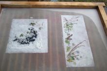 八ッ杉千年の森のイベント「和紙に炭を漉く」開催_e0061225_14111217.jpg