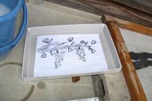 八ッ杉千年の森のイベント「和紙に炭を漉く」開催_e0061225_1442227.jpg