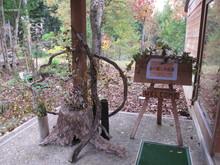 落ち葉の森のファンタジー_e0061225_902977.jpg