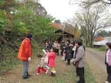 落ち葉の森のファンタジー_e0061225_9212952.jpg