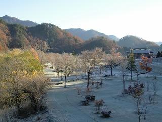 冬です!!_b0206037_8555483.jpg