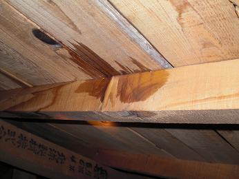 屋根裏からの雨漏り確認_d0165368_57212.jpg