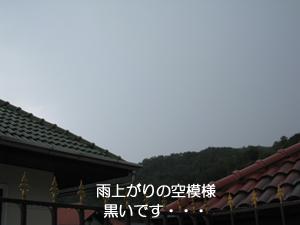 ころころ変わる天気_f0144385_16472198.jpg
