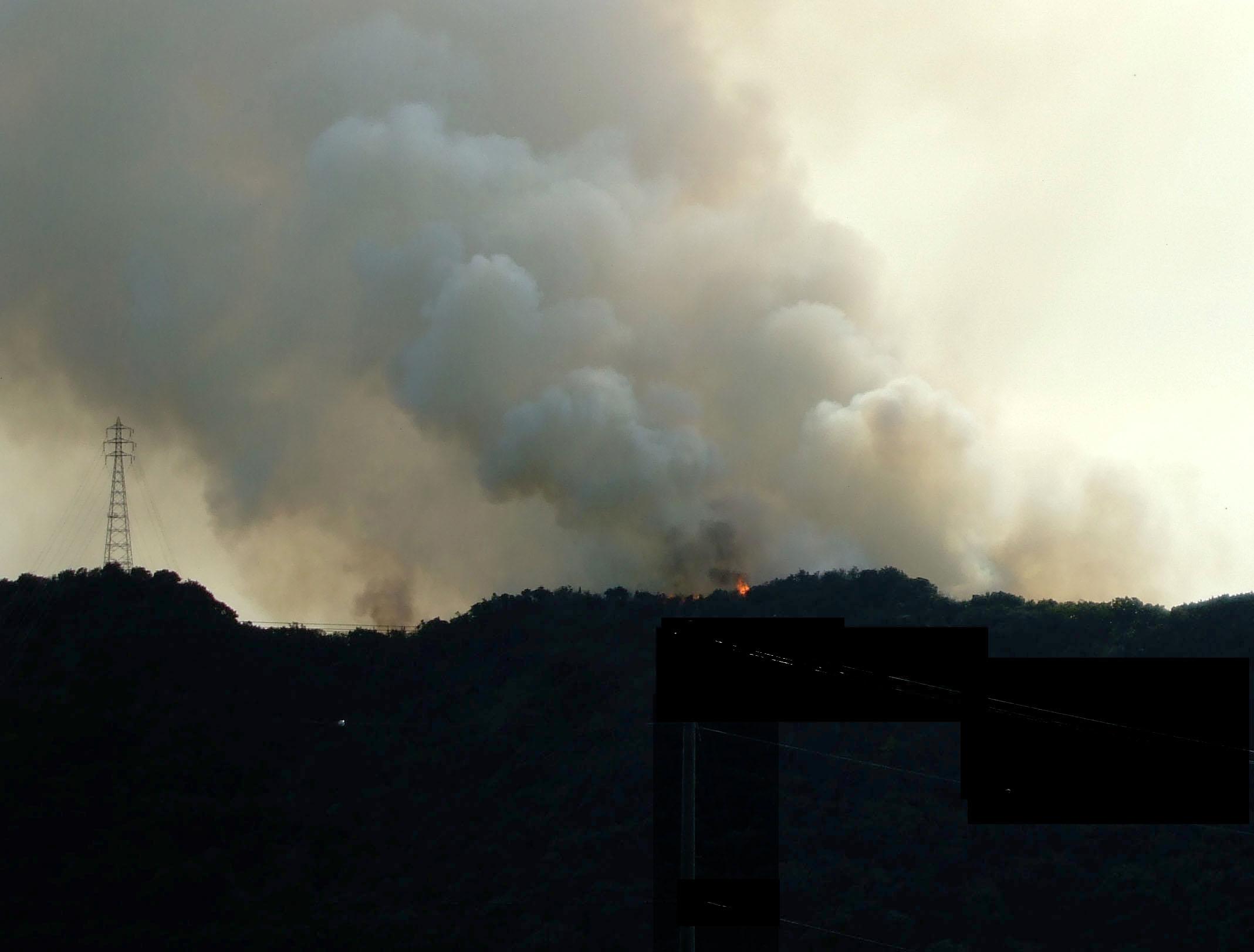 対岸の山火事           _d0141987_23201577.jpg