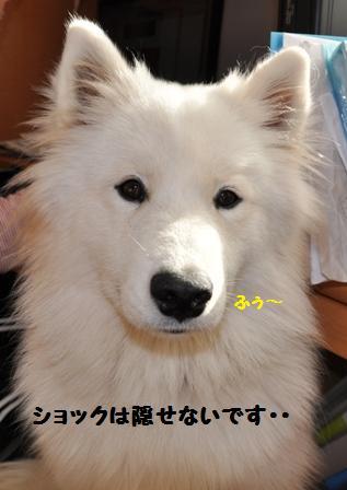 f0212597_2118920.jpg