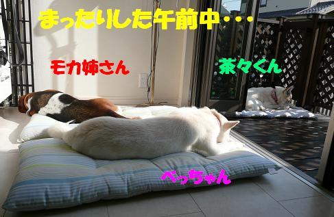 f0121712_13392624.jpg
