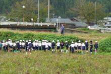 南中山小学校の子供達が大豆の収穫をしました_e0061225_910312.jpg