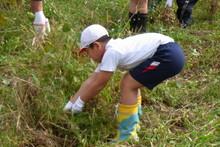 南中山小学校の子供達が大豆の収穫をしました_e0061225_9193278.jpg