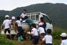 南中山小学校の子供達が大豆の収穫をしました_e0061225_9194429.jpg
