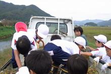 南中山小学校の子供達が大豆の収穫をしました_e0061225_9195365.jpg