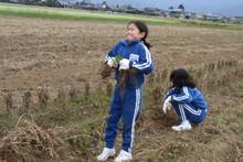 服間小学校の子供達が大豆の収穫をしました_e0061225_9414681.jpg