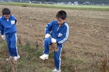 服間小学校の子供達が大豆の収穫をしました_e0061225_9423052.jpg