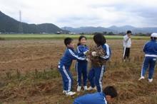 服間小学校の子供達が大豆の収穫をしました_e0061225_9423913.jpg