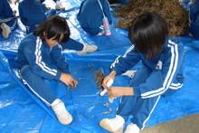 服間小学校の子供達が大豆の収穫をしました_e0061225_9493083.jpg