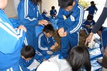 服間小学校の子供達が大豆の収穫をしました_e0061225_9501889.jpg